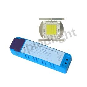 30W White High Power LED Light + Dimmable Driver AC 90V-240V