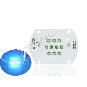 30W Cree XPE LED Emitter 30 Watts Blue Red Grow Light DIY