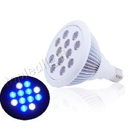 Wholesale PAR38 455nm Royal Blue + Cold White LED Bulb Lamp Grow Light 12W for 110V/220V