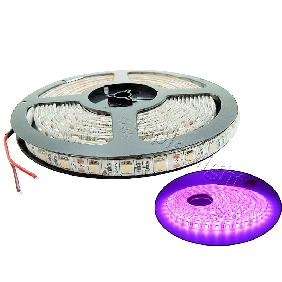 500cm Pink 5050 SMD 300 LED Bulbs Light Flexible Strip 12V