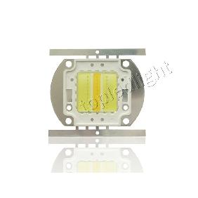30W 30 Watt High Power Led Cool White and Warm White Integrated Multichip Light