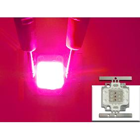 Wholesale 10W Red Blue Multichip LED For Hydroponic Plant Grow Light Lamp DIY