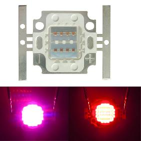 10W Red Blue Multicolor Hybrid LED