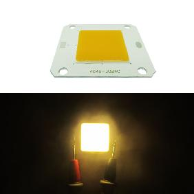 50W 12V White/Neutral White/Warm White/Full Spectrum 380-840nm LED Light