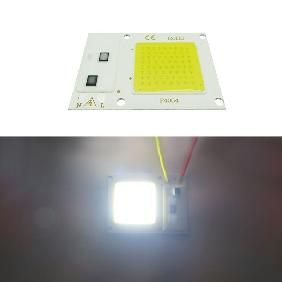 10W 20W 30W White/Warm White/Full Spectrum 380-840nm LED Flood Light 220V