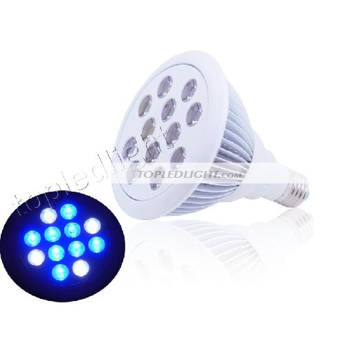 5x Royal Blue 450nm+5x Cool White 20000K High Power LED 10W light for Aquarium